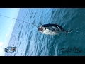 Fishing For Big Deep Sea Fish!!! Incredible Saltwater Fishing Catches