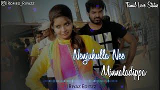 ... #nenjukulla_nee #minnaladippa #tamil_love_status #vadacurry #riyaz_editz #4...