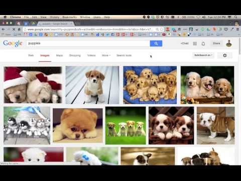 30Tip - Image Search