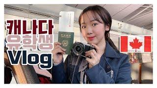 캐나다 유학생 Vlog|캐나다로 가요  12시간 장기 …