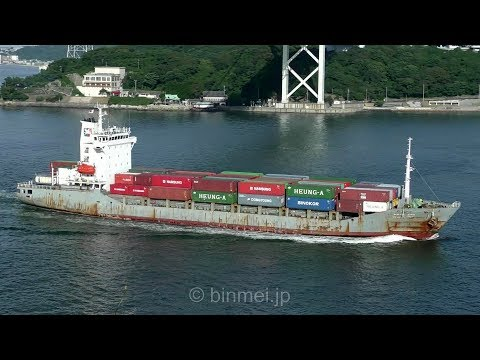 PEGASUS PRIME - DONG YOUNG SHIPPING container ship