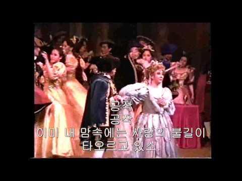 Verdi - [한글자막] Rigoletto, Live 1995, (이재환, 금난새, 강영린, 박수정)