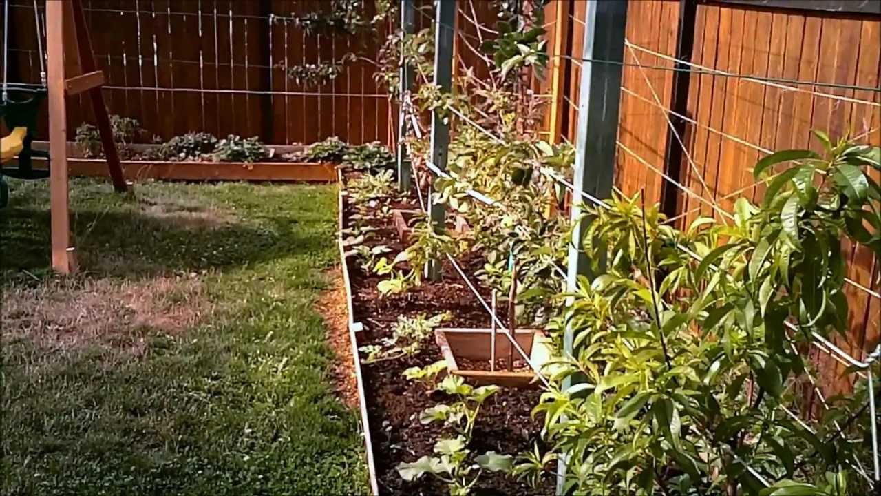 High Density Organic Gardening - Part 1 - YouTube