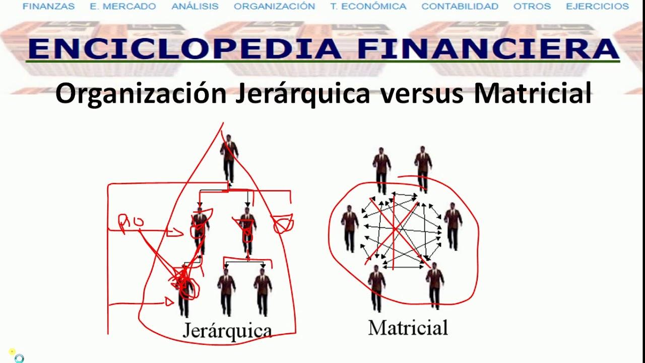 Organizacion Jerarquica