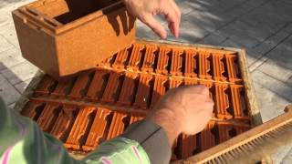 How to prepare a mating hive (nuc) for winter - Apis Donau
