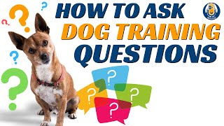 How Your Questions Instantly Improve or Sabotage Your Dog Training #49