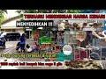 Pasar Burung Bratang Surabaya Harga Burung Kenari  Mp3 - Mp4 Download