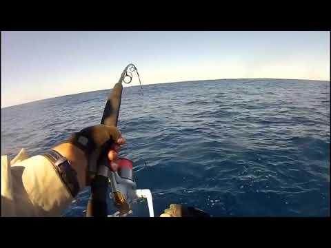 Fishing Rainbow Beach Pt2