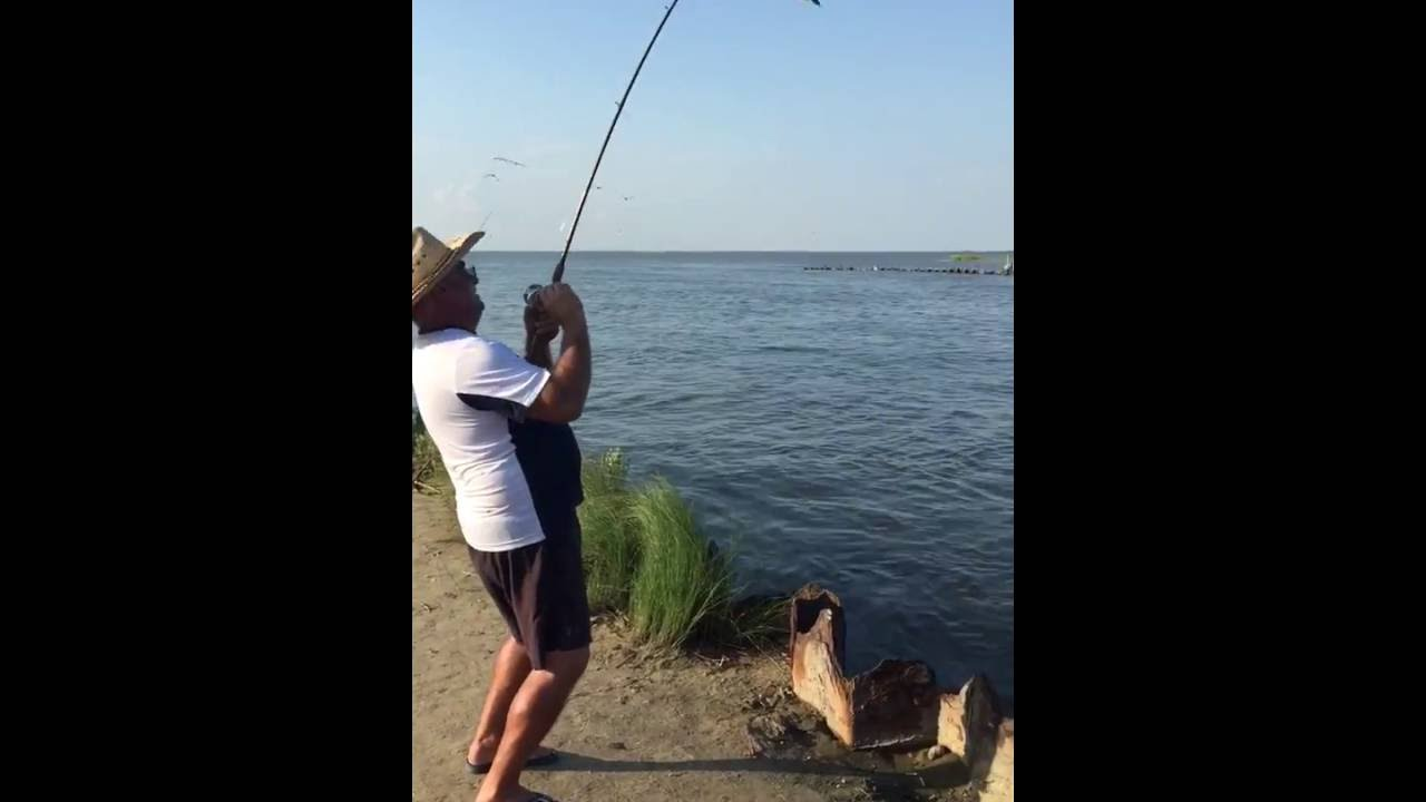 Rollover pass fishing 2016 youtube for Rollover pass fishing report