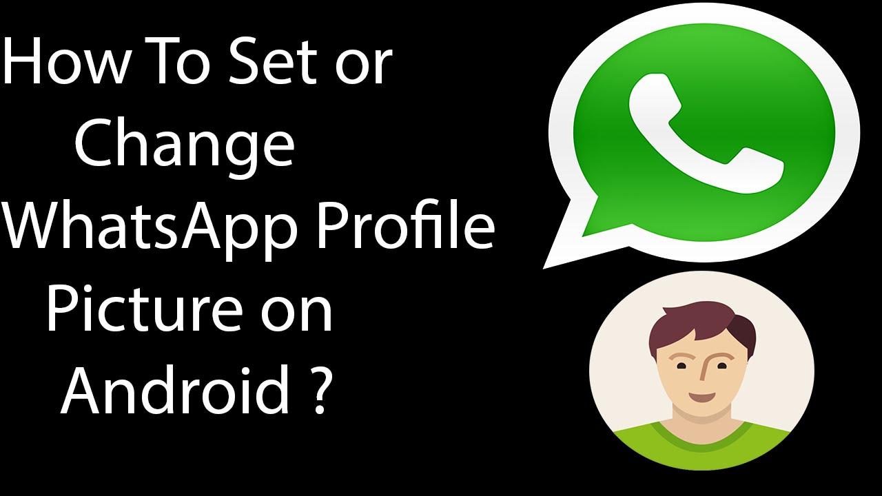 Whatsapp pic profile How to