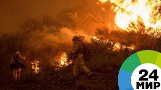 Пожары в Калифорнии унесли уже 74 жизни - МИР 24