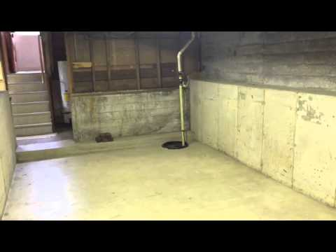 Converted crawlspace youtube for Convert crawlspace to basement cost