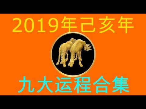 2019年己亥年九大运程大合集:肖马者
