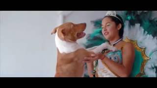 Bacondo Supay Raymi Official Video