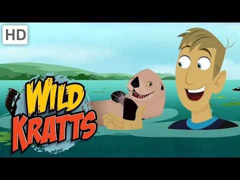 Wild Kratts - Swim With Creature Powers! | Kids Videos