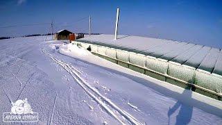 Теплица после метели последствия ледяного дождя(http://arbuzyoptom.ucoz.ru https://vk.com/arbuzyoptom https://www.facebook.com/arbuzyoptom., 2016-01-11T20:44:04.000Z)