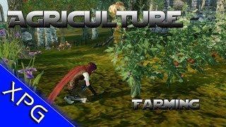 ArcheAge  - Farming, Logging and Animal Husbandry