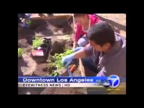 Los Angeles Conservation Corps Is Improving LA