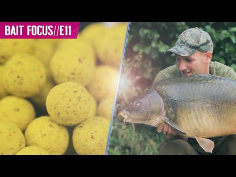BOILIES! Carp Love Them! BAIT FOCUS//E11 - Mainline Baits Carp Fishing TV