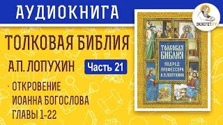 Толковая Библия. А.П. Лопухин. Новый Завет. Часть 21.