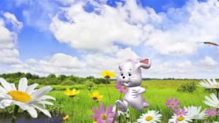 Веселый и смешной Зайка.  Песни, Нарезка-Микс из клипов с Зайкой, Попурри.