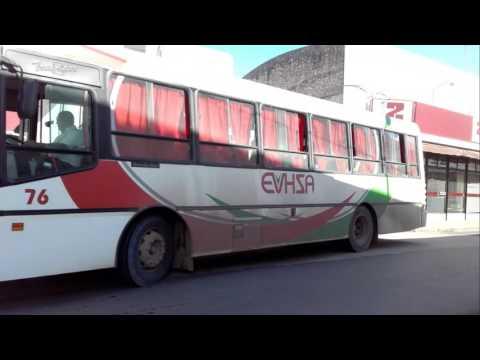 Videos de colectivos en San Nicolas de los Arroyos
