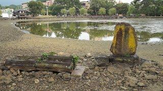 奈良の 猿沢池で水抜き清掃=外来種カメも