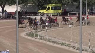 Vidéo de la course PMU PREMI PETRA