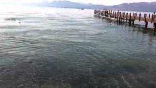 RC boat crash into dock wipeout