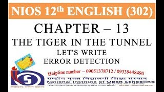 CHAPTER 13   THE T GER  N THE TUNNEL LETS WR TE ERROR DETECT ON  N OS ENGL SH 302