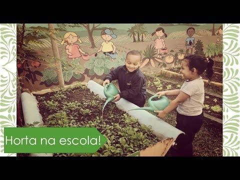 Видео Nutrição curso