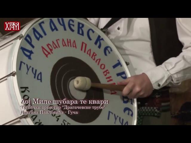 Dragacevske trube - Aoj Mile subara te kvari