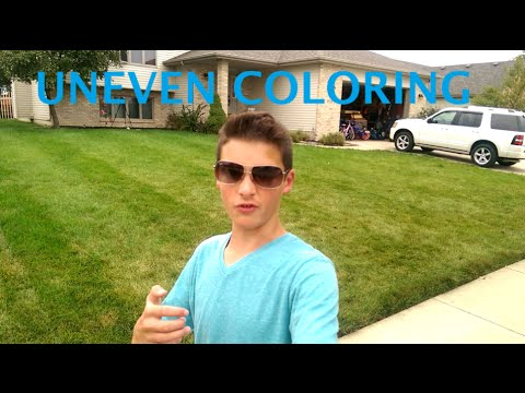 Uneven Coloring In The Lawn - YouTube