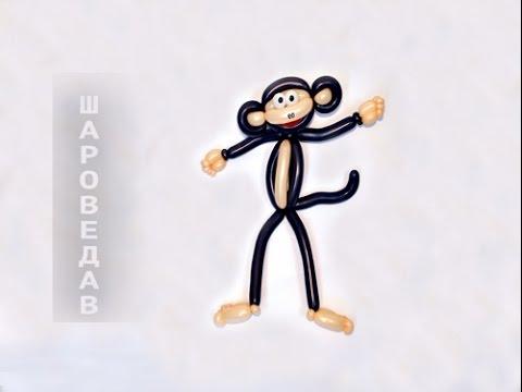 Обезьяна из воздушных шаров  Monkey of balloons.