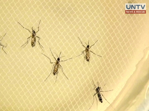 The Philippines has 57 Zika cases including 3 new pregnant cases — DOH