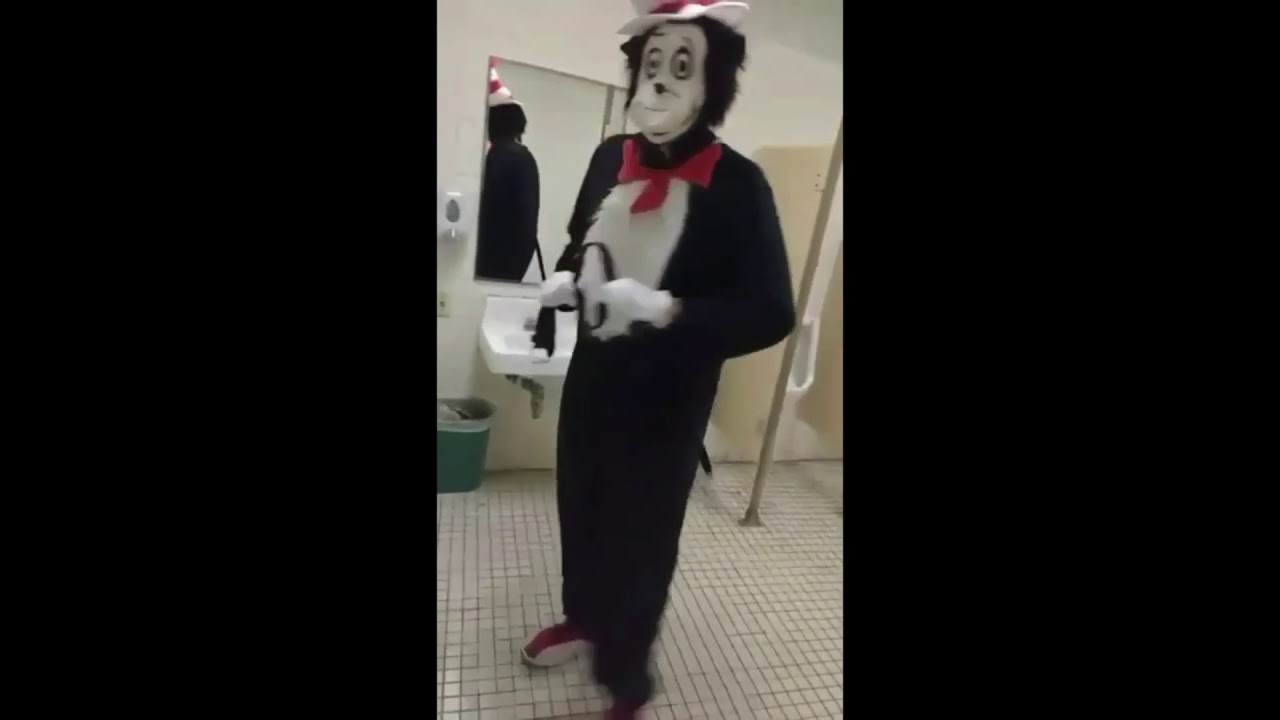 Cat In The Hat In Bathroom Youtube