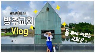 jeju vlog 서귀포 여행코스 추천! | 한국에서 …