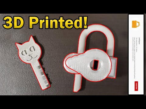 Overview On A Fully Working 3D Printed Disc Detainer Lock Designed by LethalogicaX!