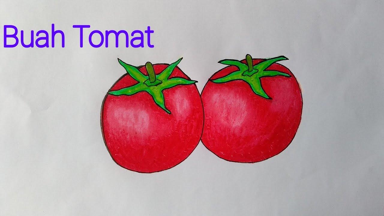 Menggambar Buah Tomat Yang Mudah Mewarnai Dengan Gradasi Crayon