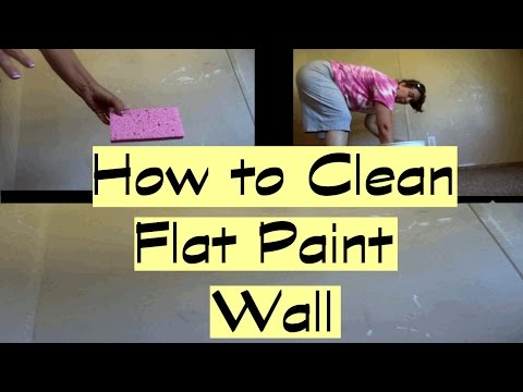 How to Clean Flat Paint Walls | Home Maintenance | Savvy Serena