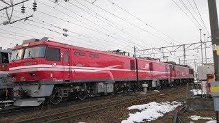 【配給列車】EF510-18[富] + ムドEH800-11[五] (配6551レ) 北陸本線 南福井駅 2018.2.3.