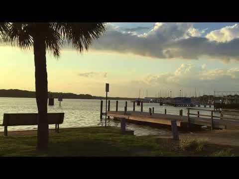 Nature and Wildlife in Niceville, FL