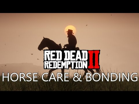 About Red Dead Redemption 2's Horse Care & Bonding Systems