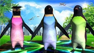 Penguin Learning Music English Nursery Rhymes    Collection Penguin Rhymes For Kids