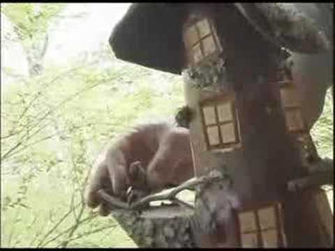 Elf House Woodcarving by Steve & Tree Spirit by Mingo