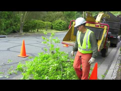 Preventing Wood Chipper Fatalities - YouTube