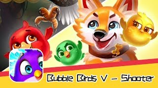 Bubble Birds V - Shooter - ZiMAD Walkthrough   Bubble shooter