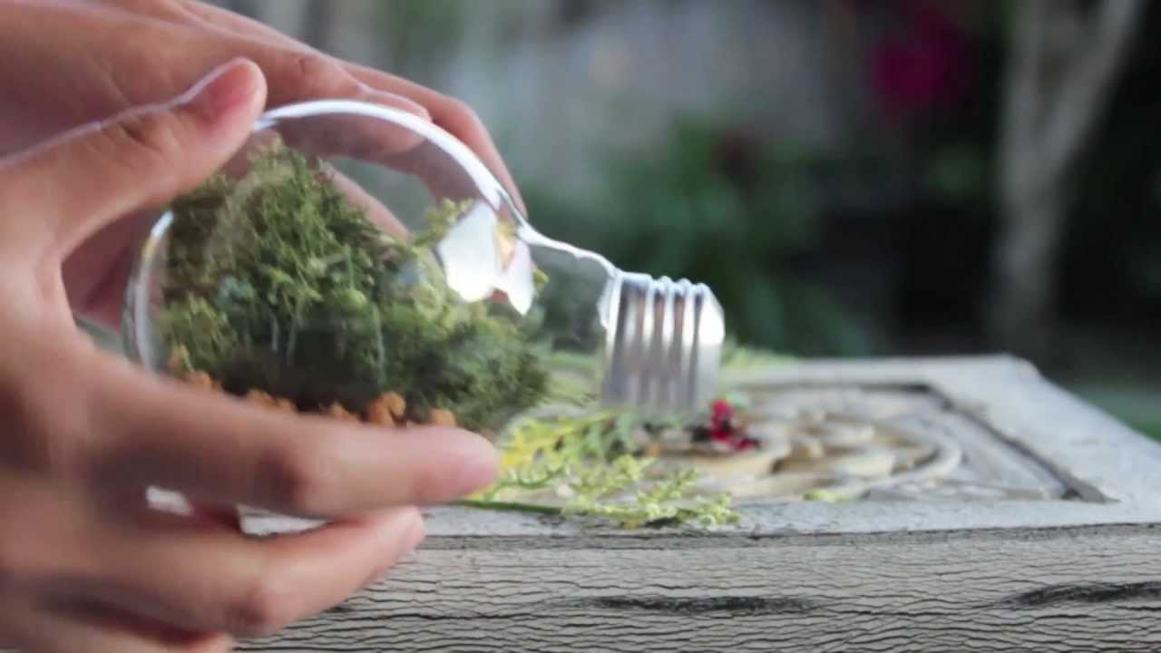 Diy Lightbulb Terrarium Youtube