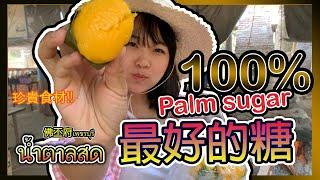 尋找100%糖棕的旅程!! 回曼谷前的最後一站Hello Elie 【泰國-佛 ...