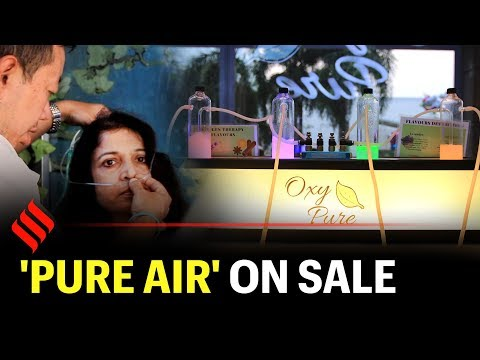 At Delhi's First Oxygen Bar, Breathe In 'pure Air' For Rs 300